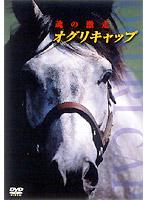オグリキャップ 魂の激走[PCBG-50348][DVD]