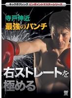 キックボクシングマスターシリーズ 寺戸伸近 最強のパンチ 右ストレートを極める