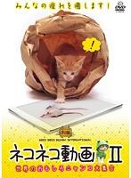 ネコネコ動画