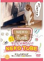 ネコだってテレビがみたい!NEKO TUBE