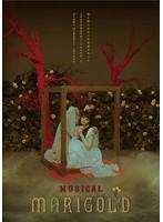 TRUMPシリーズ 10th ANNIVERSARY ミュージカル『マリーゴールド』