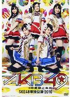須田亜香里出演:ミュージカル『AKB49〜恋愛禁止条例〜』SKE48単独公演