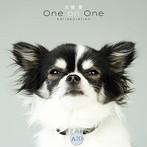 大塚愛/One on One Collaboration(アルバム)