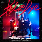 Where you are feat.LITTLE(KICK THE CAN CREW)/BlooDye(シングル)