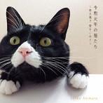 秋元順子/令和元年の猫たち~秋元順子 愛をこめて~(アルバム)