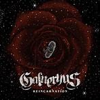 Galneryus/REINCARNATION(アルバム)