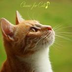 プラチナムベスト 猫(ニャン)ちゃんの好きなクラシック(UHQCD)(アルバム)