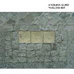 井出靖/Endless Echo(SHM-CD)(アルバム)