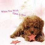 星に願いを(アルバム)