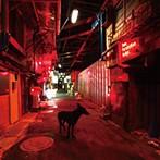 9mm Parabellum Bullet/Black Market Blues(シングル)